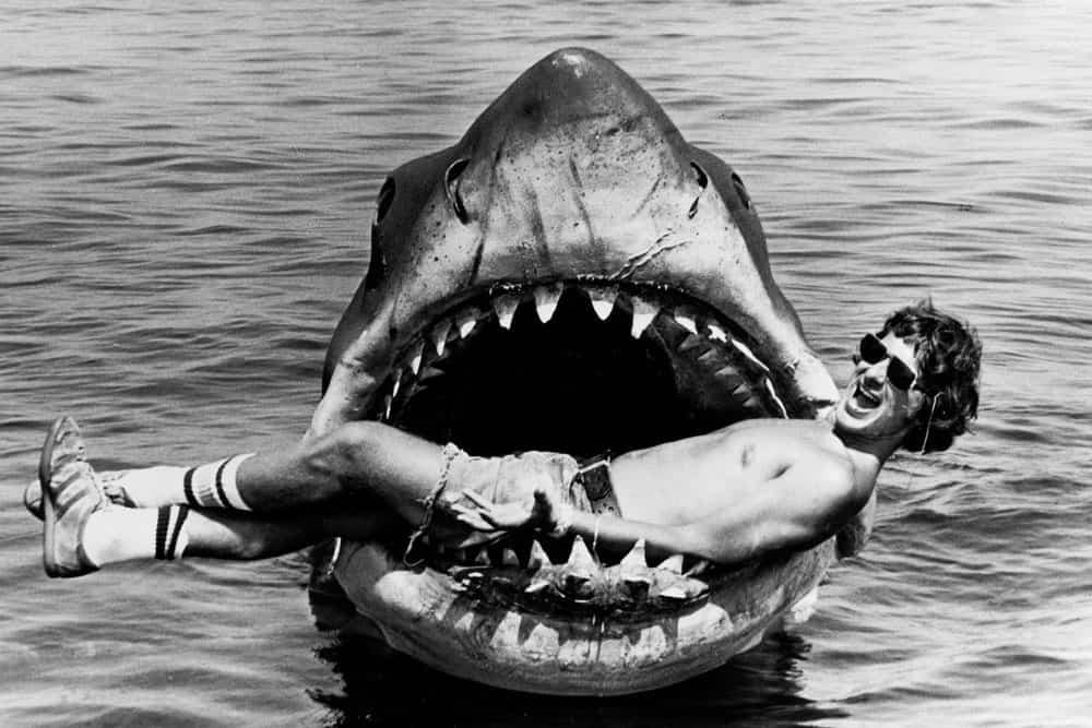 Steven Jaws